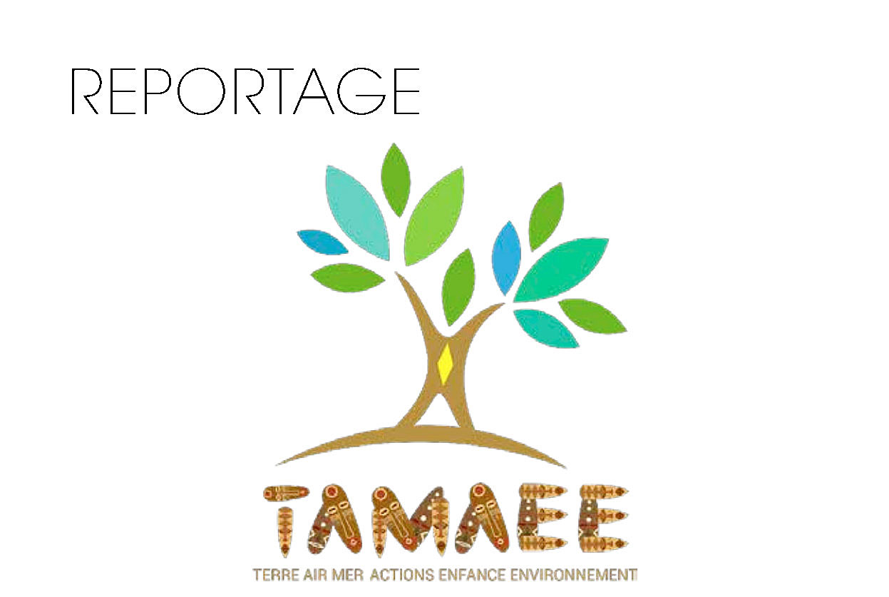 ONG : Association TAMAEE