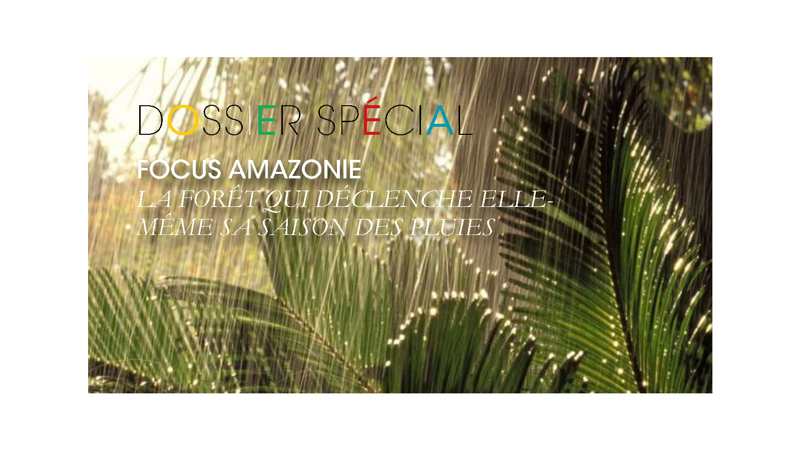 Focus Amazonie. Mousson ou saison des pluies